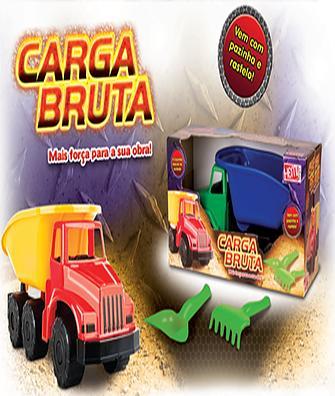CAMINHAO CARGA BRUTA C/ACESS